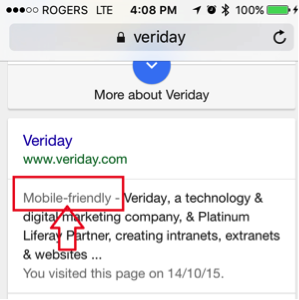 Mobile Friendly in Search Engines
